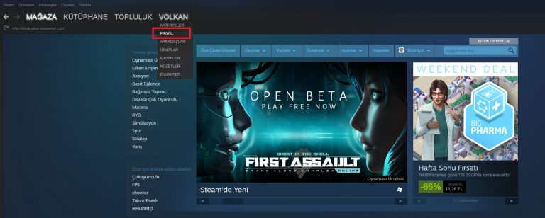 Steam Profil Linki Öğrenme